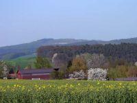 2006-110